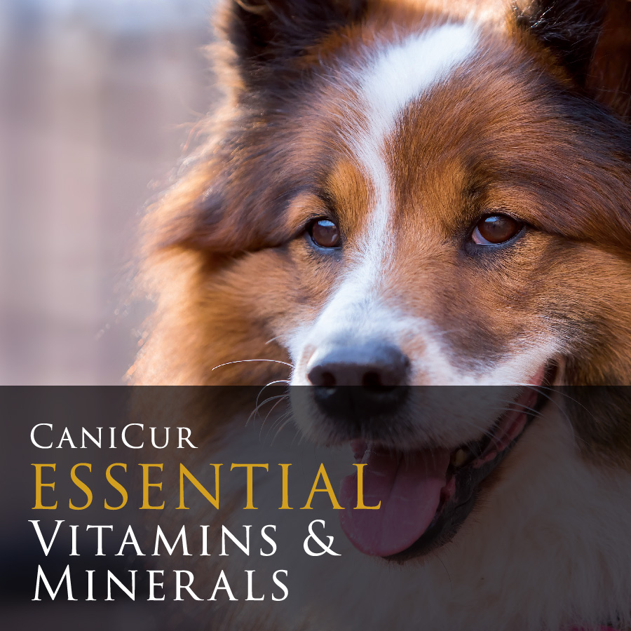 Essential Vitamins & Minerals (0.75kg)