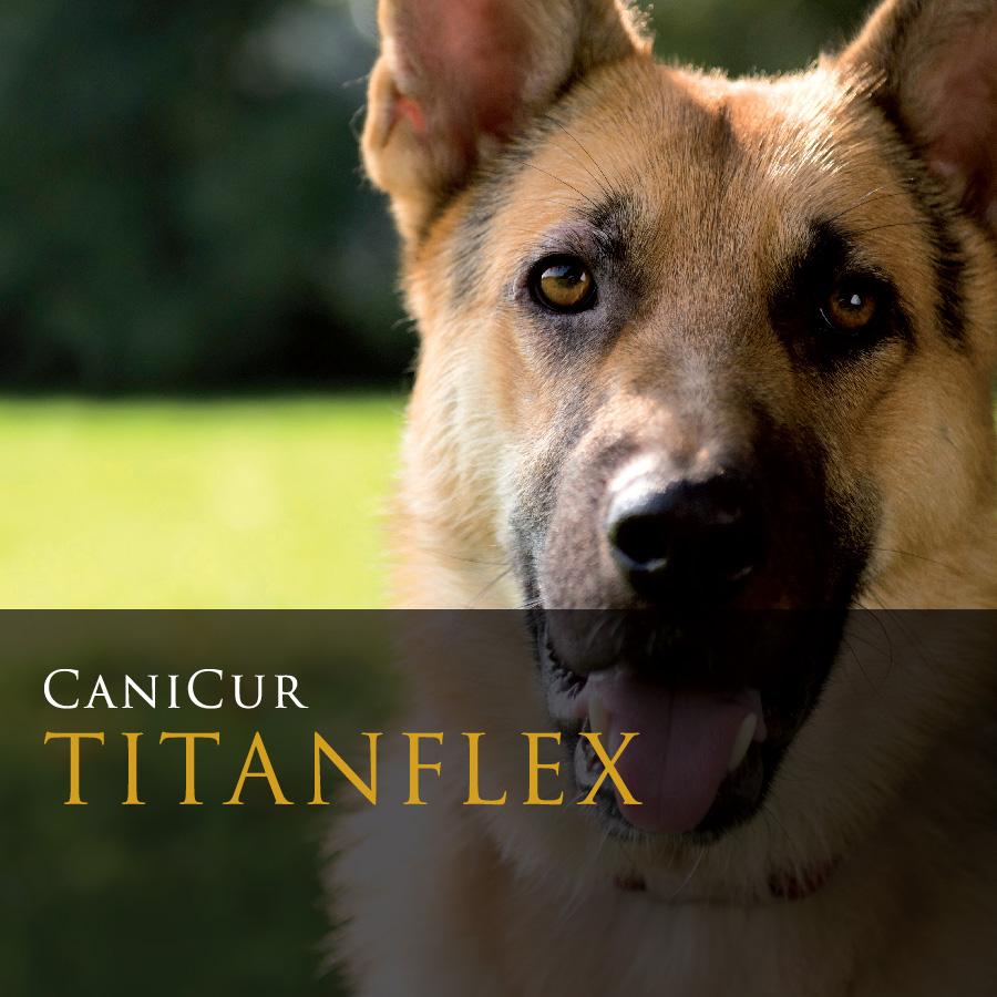 Titanflex (0.5kg)