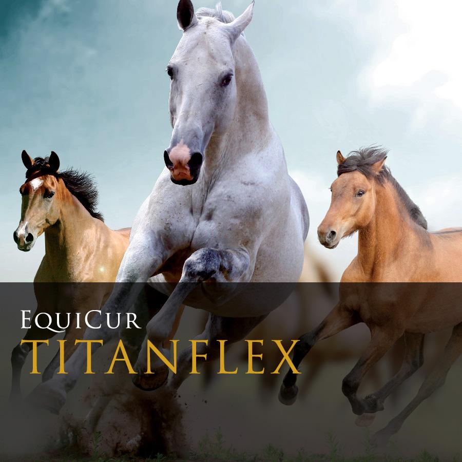 Titanflex (3kg)