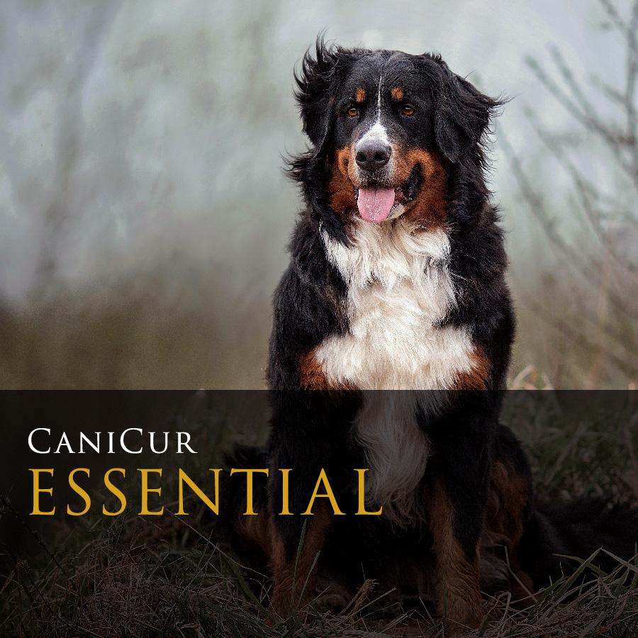 Essential (1kg)