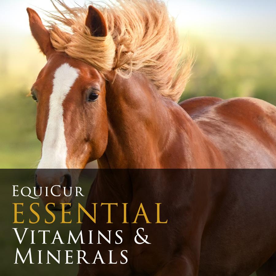 Essential Vitamins & Minerals (1.5kg)