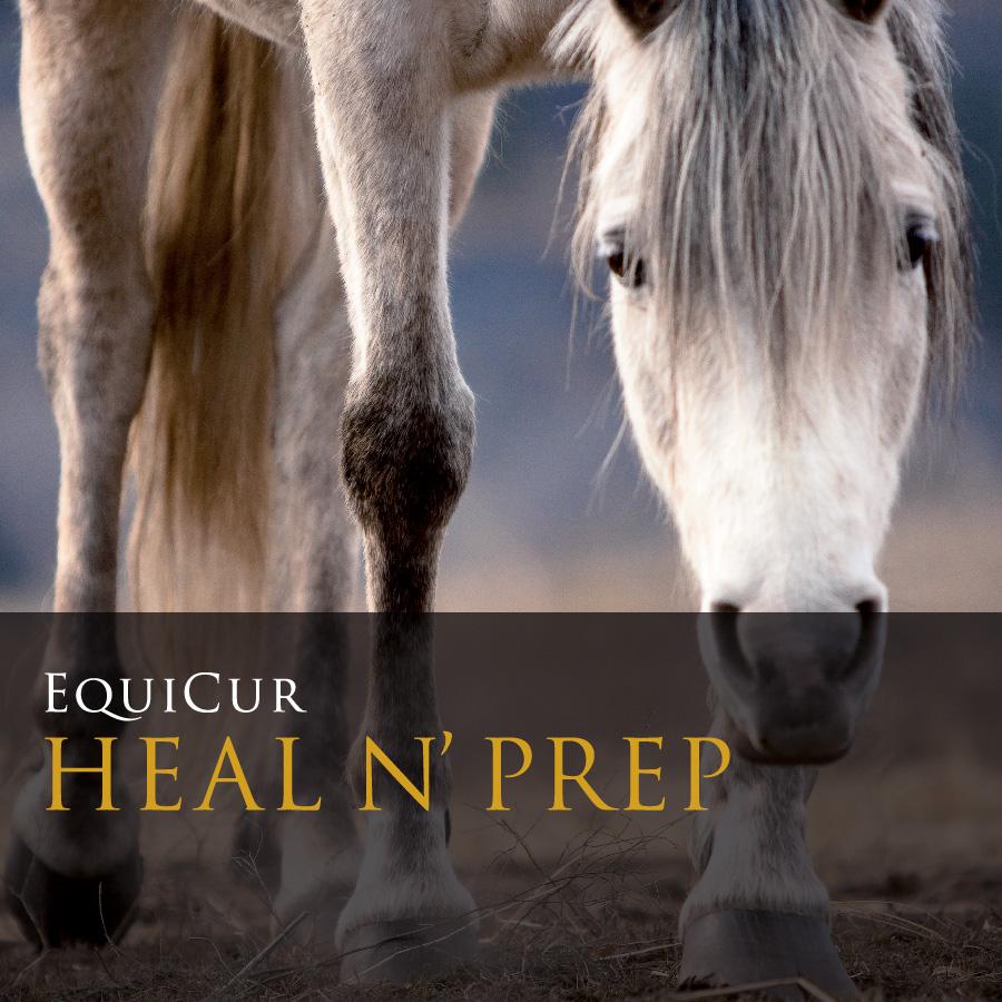 Heal N' Prep (2kg)